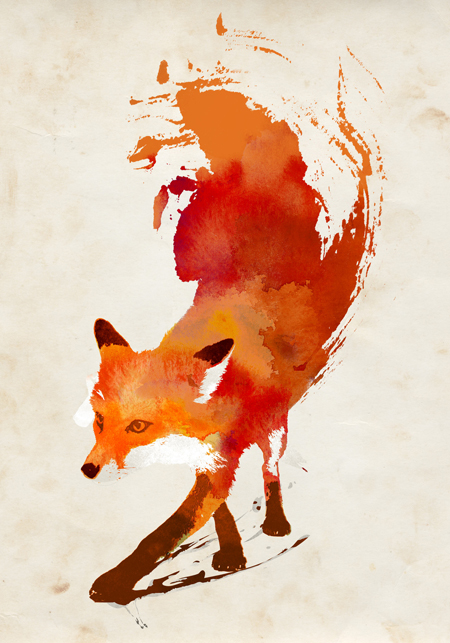 Renard illustration de Robert Farkas