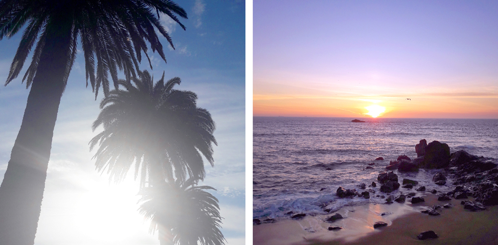 Porto oh really foz do douro coucher de soleil sunset