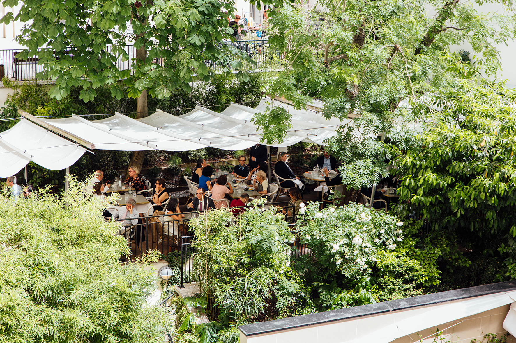 terrasse paris végétale